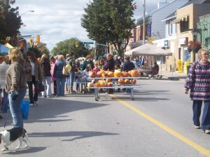 Newcastle fall Festival