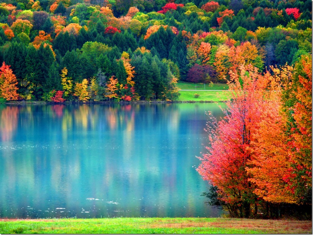 fall_lake-trees-88i