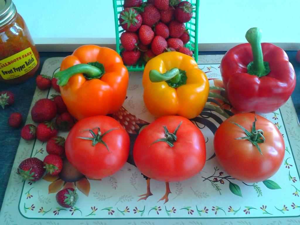 MY-FARMERS-MARKET-HARVEST8